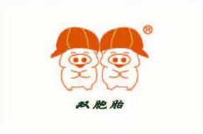 饲料包装_编织袋_ 亚美达集团官网_塑编二十强企业客户双胞胎