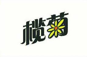 云南编织袋榄菊